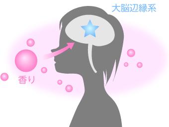 嗅覚の反応